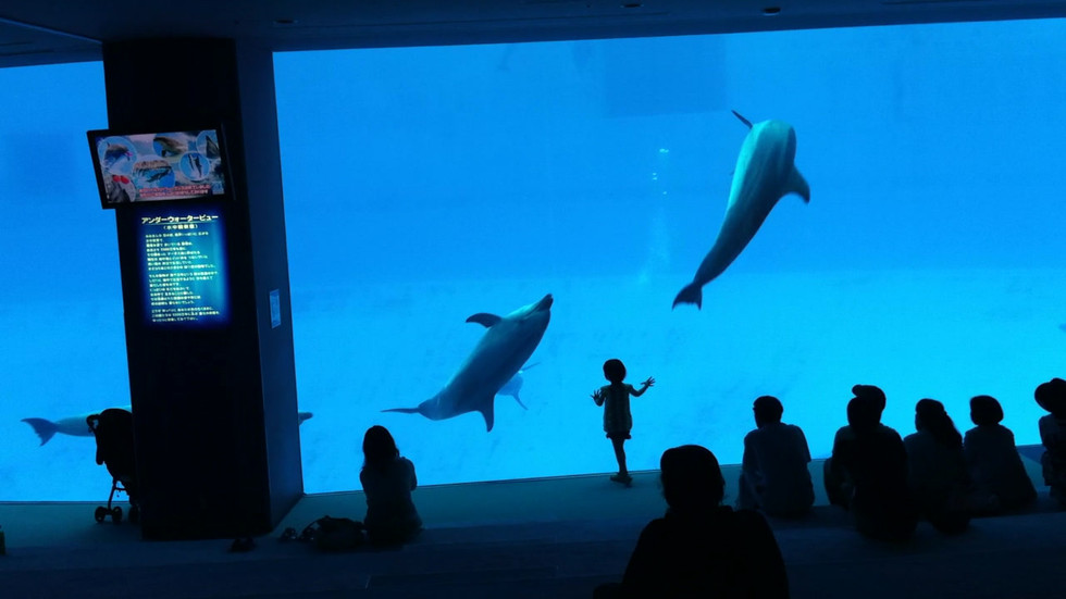 Blue from Vignettes-Japan with Kids, video 190 min, 2016