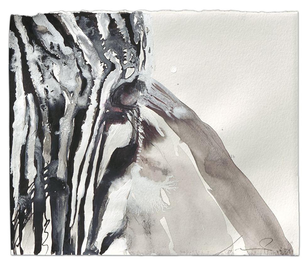 Zebra-I see you, ink an