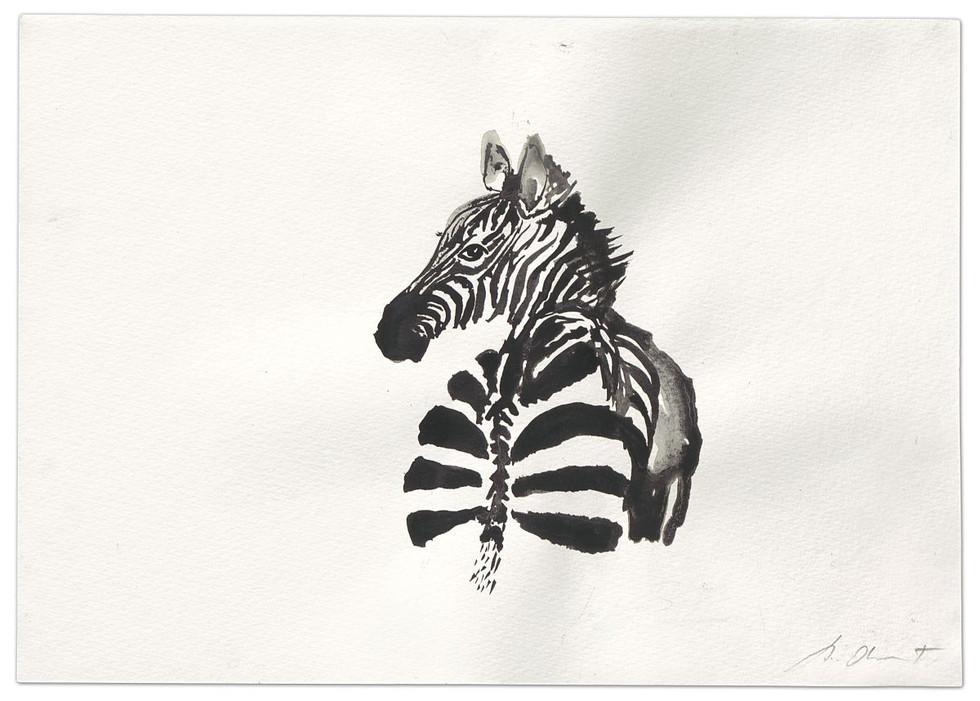 Zebra-Y ya me estoy yendo...., ink on paper, 2014