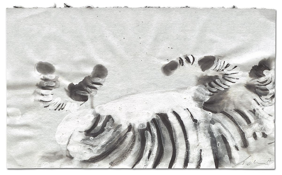 Zebra-Defeated, ink on paper, 2014
