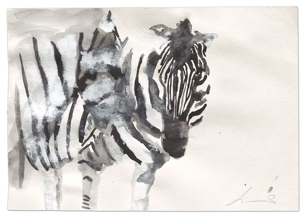 Zebra-Dialogue, ink and acrylic on paper, 2014