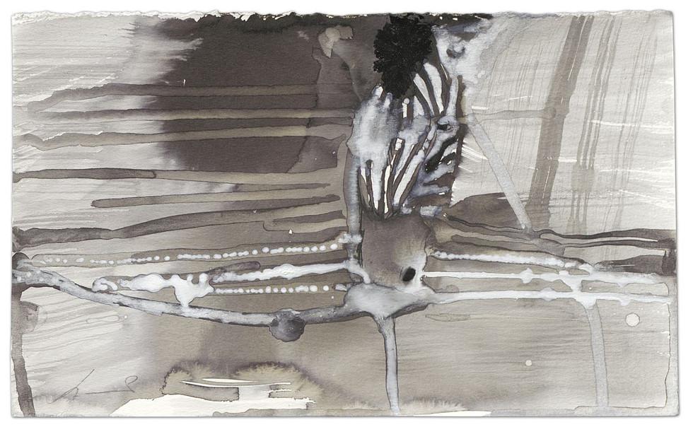 Zebra-Duchamp, ink on paper, 2014