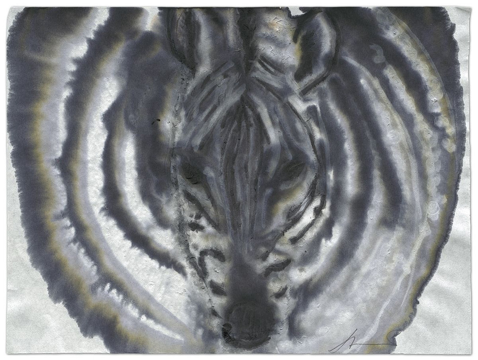 Zebra-Echoes, ink on paper, 2014