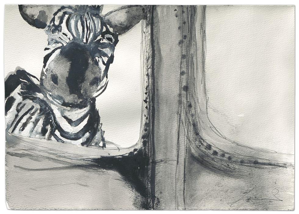 Zebra-Keep the sense of humor, ink on paper, 2014