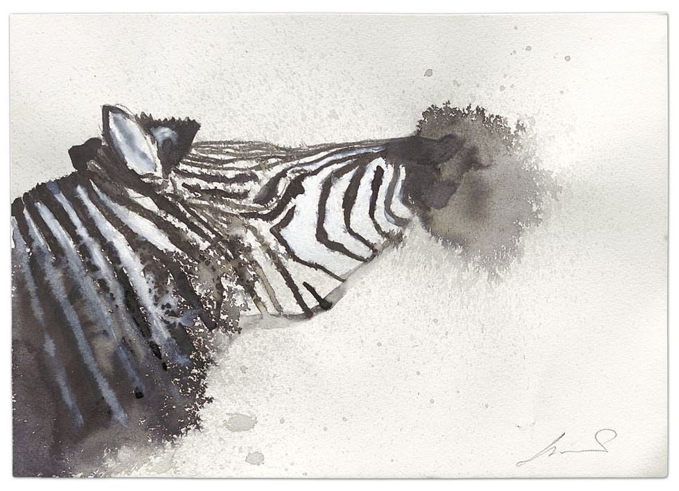 Zebra-Can you hear me?, ink on paper, 2014
