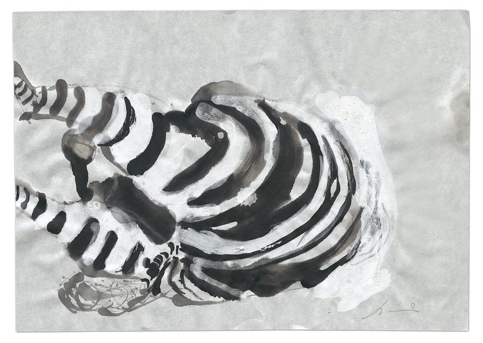 Zebra-Dead, ink and acrylic on paper, 2014