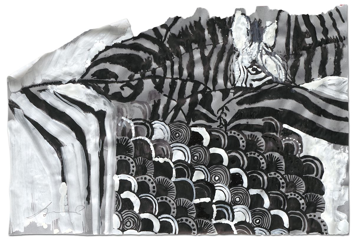 Zebra-Zebras, ink and acrylic on tracing paper, 2014