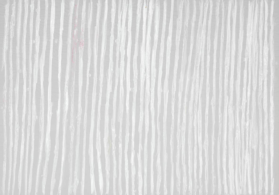 White Zen- Lines
