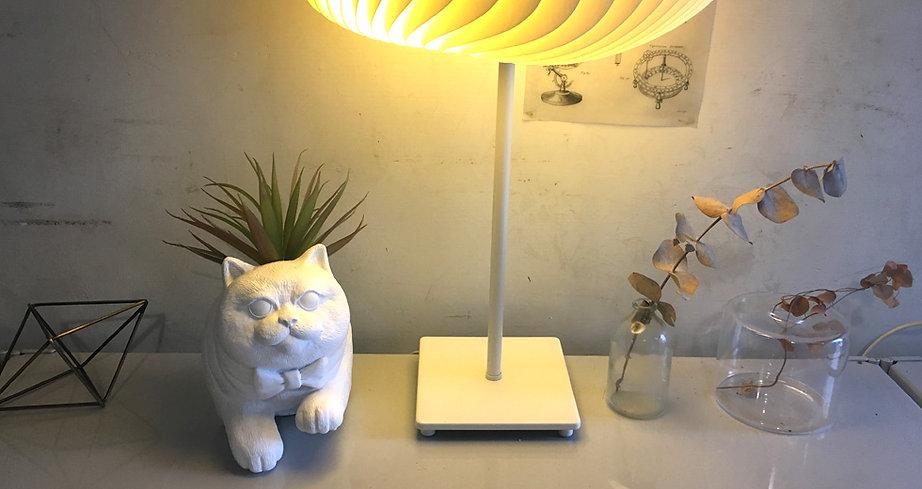 jump_cat_top.jpg