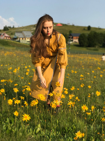 Our First Arnica Harvest Near the French Alps