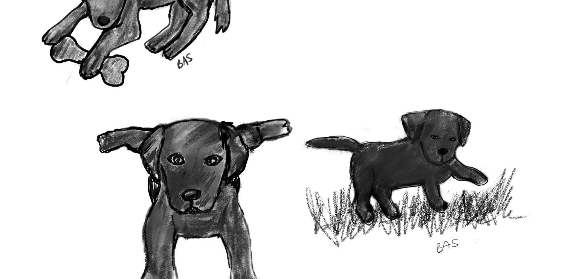 blab sketches