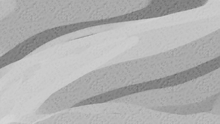 Gray Wave Background