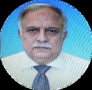 Hamid Gulzar.png