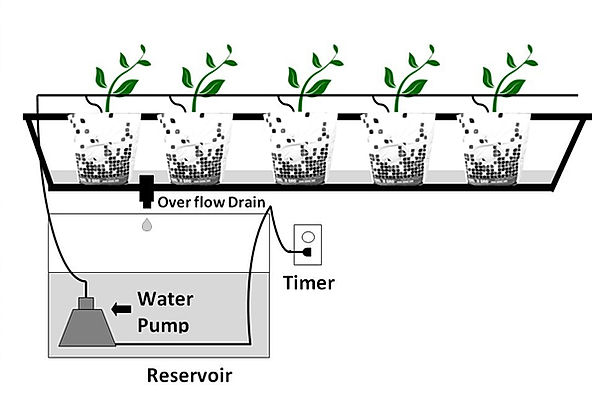 hydroponic system with grow bags, water pump, and overflow drain