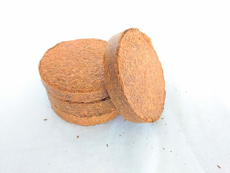 four coconut coir disks