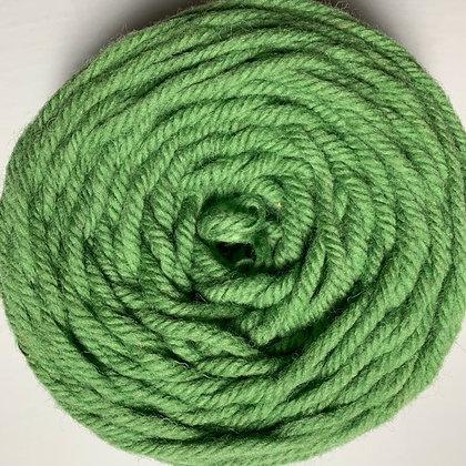 1403 The ILiad (Fern Green)