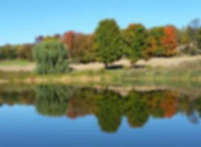 Fall Color on our Farm - Sunny Hill Farm - Sussex County, NJ