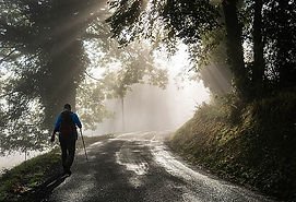 Cottages de Garrigue Dordogne walking holidays misty morning walks