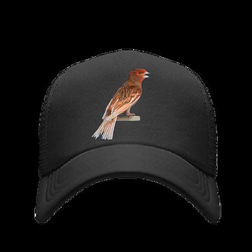 Gorra Con ave color