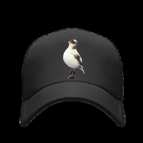 Gorra con ave postura