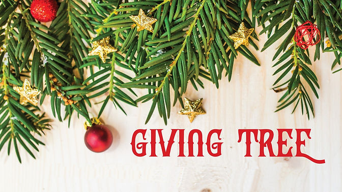 Giving-Tree-01-scaled.jpg