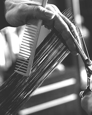 california hair.jpg