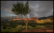 sunrise at garden 7-28.2020 HL7A0356 FB