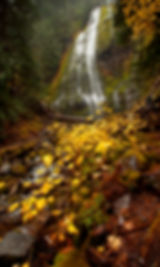 proxy fall rain 2252.jpg