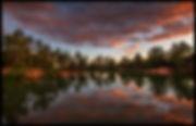 fox sunset 6-30-2020 HL7A5998 50x32 FB C