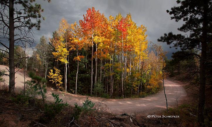 island of fall color copy.jpg