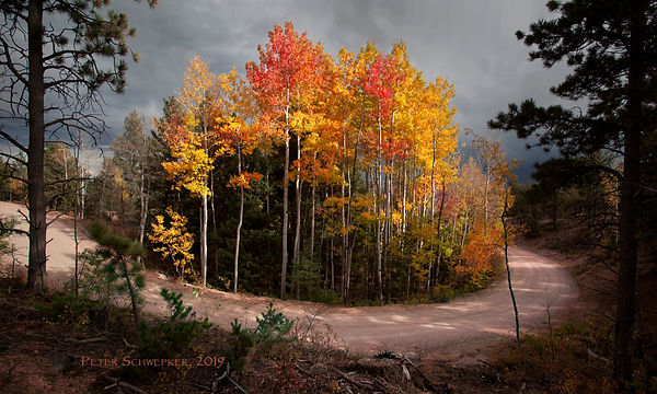 island of fall color c.jpg
