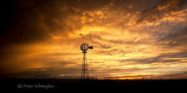 golden windmill sunset copy.jpg