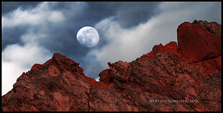 moon over garden 2-24 BB HL7A5277.jpg