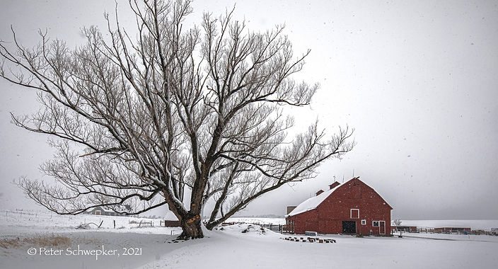 barn%20in%20snow%20HL7A3184%20for%20onli