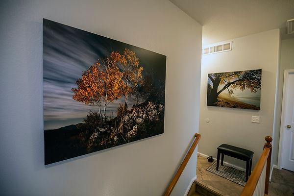 photos on wall HL7A0839.jpg