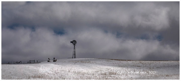 windmill panop 50x25 5-25 b.jpg