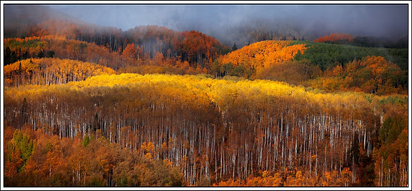 bright aspen pano 2017__for card.jpg