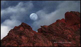 moon over garden 2-24 HL7A5277 50x30.jpg