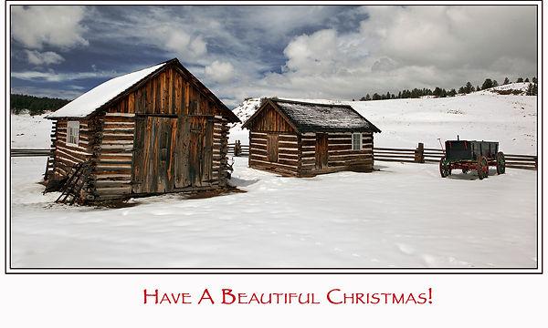 florissant snow cabin  2734 for card.jpg