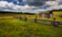 florissant homestead 2016.jpg