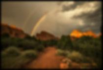 garden rainbow HL7A1192b FB COPY.jpg