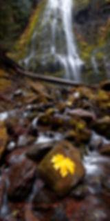 proxy falls 2016 vesion 2209 20x40.jpg