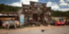 guffey cat 5281 c.jpg