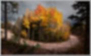 island of fall color c card.jpg