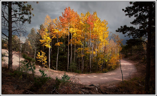 island of fall color c card.jpg