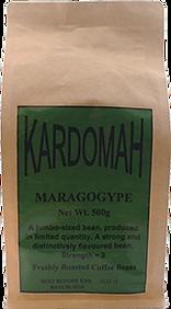 Margogype.png
