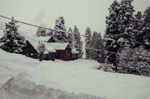 Gupta_V_Kashmir_11.jpg
