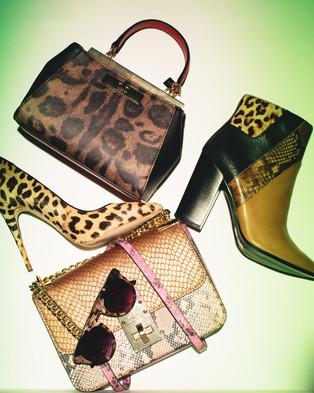 Gupta_V_accessoriesinwild_5.jpg