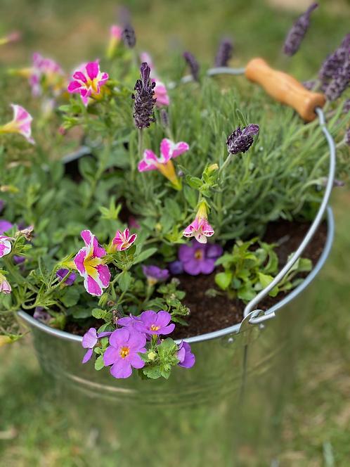 Zinc Planted Bucket
