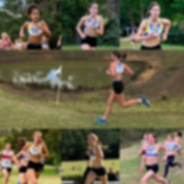 NSW Athletics, Nippers training, Speed and Agility, Running groups Sydney, Running Groups Centennial Park, Kid's Running Groups Sydney, Kid's running group Centennial Park, Cross Country Training. Trail Running, Kid's trail Running, Sweat Sydney, kids running groups Sydney, Sprint Coachin